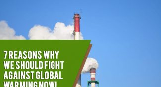 7 Reasons Why We Should Fight Against Global Warming Now!